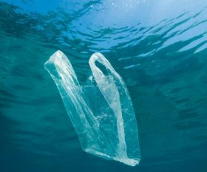 https://www.tp24.it/immagini_articoli/29-04-2021/1619717883-0-sicilia-un-progetto-per-recuperare-e-ridurre-i-rifiuti-in-mare.jpg