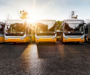 https://www.tp24.it/immagini_articoli/29-07-2021/1627594271-0-autobus-in-sicilia-crollano-le-immatricolazioni-ma-non-a-trapani-che-ha-mezzi-molto-vecchi.jpg
