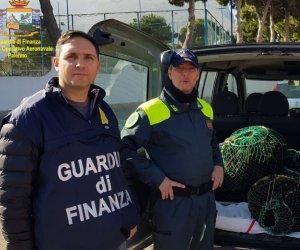 https://www.tp24.it/immagini_articoli/30-01-2020/1580373735-0-sicilia-vende-abusivamente-sarde-ricci-mare-merce-sequestrata-multa-8500-euro.jpg