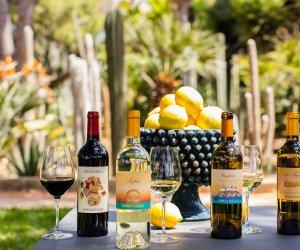 https://www.tp24.it/immagini_articoli/30-04-2017/1493541756-0-cresce-la-passione-dei-turisti-per-le-aziende-vinicole-siciliane.jpg