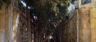 https://www.tp24.it/immagini_articoli/30-10-2020/1604045257-0-commemorazione-dei-defunti-regole-e-servizi-per-i-cimiteri-di-marsala-salemi-ed-erice.jpg