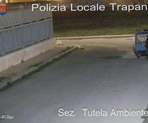 https://www.tp24.it/immagini_articoli/30-10-2020/1604063408-0-trapani-buttano-rifiuti-per-strada-beccati-dalle-telecamere.jpg