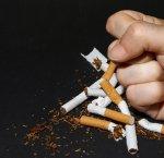 https://www.tp24.it/immagini_articoli/30-11-2015/1448906310-0-biotrading-e-sinergia-insieme-per-smettere-di-fumare.jpg