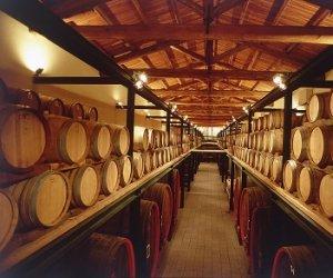 https://www.tp24.it/immagini_articoli/30-12-2016/1483097045-0-vino-ecco-fatturato-e-ricavi-delle-cantine-di-marsala-e-del-territorio-trapanese.jpg