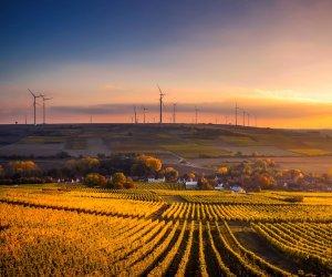 https://www.tp24.it/immagini_articoli/31-10-2019/1572522116-0-imprese-italiane-ecosostenibili-oltre-400mila-investono-green-economy.jpg