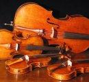 https://www.tp24.it/immagini_eventi/1557854250-concerto-quartetto-darchi.jpg
