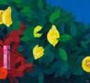 https://www.tp24.it/immagini_eventi/1591796567-nel-giardino-dei-limoni-di-giovanni-proietto.jpg