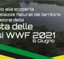 https://www.tp24.it/immagini_eventi/1622807842-wwf-celebra-la-giornata-mondiale-dell-ambiente.jpg