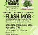 https://www.tp24.it/immagini_eventi/1634231612-preziose-per-natura-flash-mob-a-capo-feto.jpg